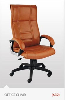 chair-office-delhi-view-type