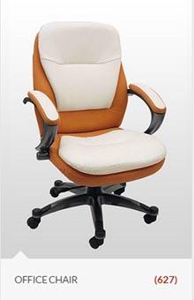 chair-office-delhi-view